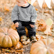 Happy child with pumpkins on sunset — Stock Photo #27751415