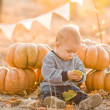Happy child with pumpkins on sunset — Stock Photo #27751475