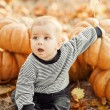 Happy child with pumpkins on sunset — Stock Photo #27751485