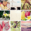 Stock Photo: Summer collage with tropical fruit, sunset and palm