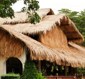 Traditional rural house from Thailand — Stock Photo