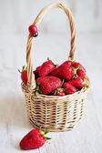 Basket of fresh strawberry on white background with ladybug — Stock Photo