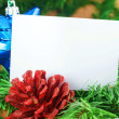 Blue star and cone on christmas tree — Stock Photo