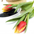 Red tulips — Stock Photo #19311899