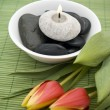 Stock Photo: Spring zen like SPA with red tulips