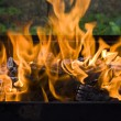 Stock Photo: Flames