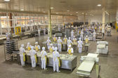 Bread-making factory — Stock Photo