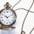 Pocket watch on white background — Stockfoto