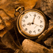 Pocket watch with rock — Stock Photo #32640189