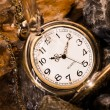 Pocket watch with rock — Stock Photo