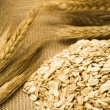 Stock Photo: Wheat and oats on burlap