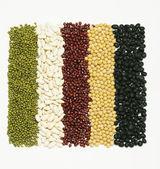 Mixed beans — Stock Photo