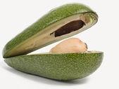 Avocado from two half — Stock Photo