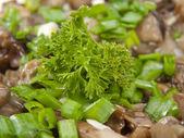 Parsley leaf on salad — Stock Photo