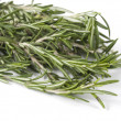 Rosemary on a white background — Stock Photo