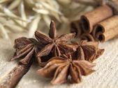 Aniseed tree and cinnamon — Stock Photo