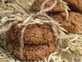 Avenaceous cookie — Stock Photo