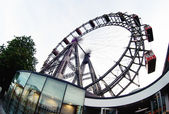 Viennese giant ferris wheel, most popular tourist attraction, Au — Stock Photo