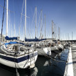 Sailboats in harbor.Italy — Stock Photo