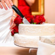 Bride and groom cutting wedding cake — Stock Photo #19808863