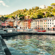 View of Portofino. — Stock Photo