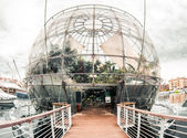 Small but rich botanical garden-Biosphere. Genova,Italy — Stock Photo