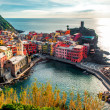 Aerial view of Vernazza — Stock Photo #20505433