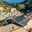 Aerial view of Vernazza - small town in Italy — Stock Photo