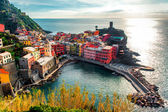 Aerial view of Vernazza — Stockfoto