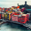 Aerial view of Vernazza — Stock Photo #20670127