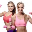 Two beautiful young women doing fitness exercise with dumbbells — Foto de Stock