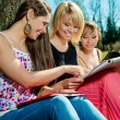 Group of students studying outdoors — Stock Photo
