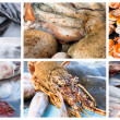 Collage of raw seafood — Stock Photo