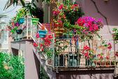 Flowers on balcony — Stock Photo