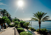 View of Eivissa promenade. Ibiza, Spain — Stock Photo