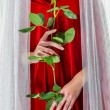 Stock Photo: Womwearing red cloak holding red rose