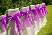 White wedding chairs with purple bows outdoors — Stock Photo
