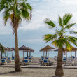 Parasols with deckchairs on beach. Nerja, Spain — Stock Photo #39762679