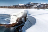 Griffin Ivanova, hot spring in the Nalichevo National Park — Stock Photo