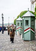 Střídání stráží v Budínský hrad, — Stock fotografie