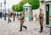 Changing of the Guards in the Buda Castle, — Stock Photo