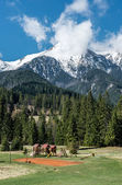 Picturesque landscape with empty playground and High Tatras — Stockfoto