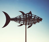 Tuna wind vane. Tarifa town, Cadiz. Spain — Stock Photo
