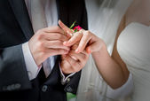 Groom placing a wedding ring on the finger of his bride — Stock Photo