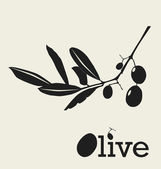 Stylized olive branch — Stock Vector
