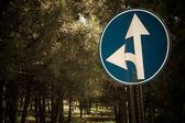 Düz ya da sol trafik işareti gitmek — Stok fotoğraf
