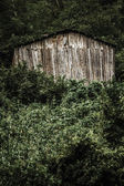 Wooden Hut on a Hillside — Stock Photo