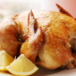 Ruddy  chicken — Stock Photo