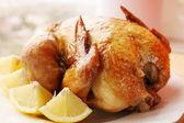 Ruddy chicken — Stock Photo