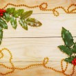 Leaf ilex and garland — Stock Photo